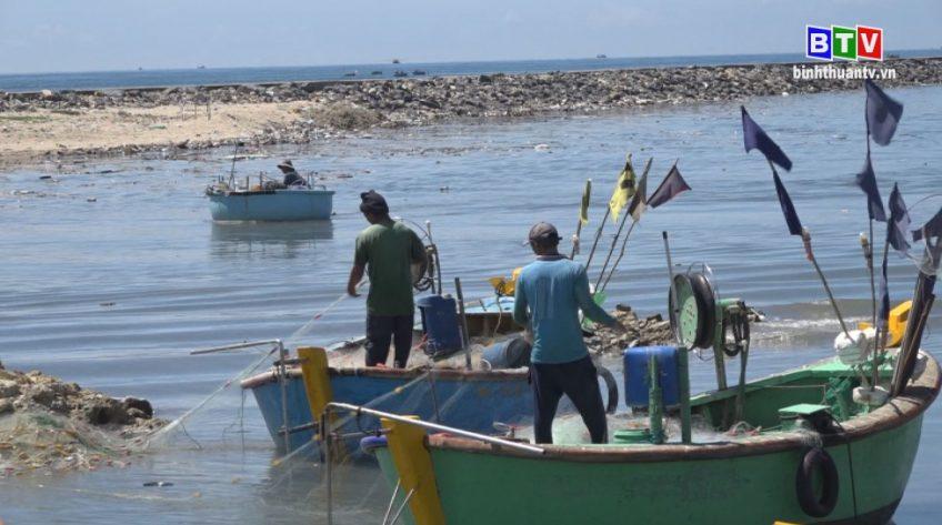 Kinh tế thủy sản 20-7-2020