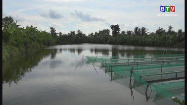 Nông vụ Bình Thuận 27-7-2020
