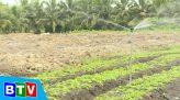 Câu chuyện nông nghiệp | 9.2.2021