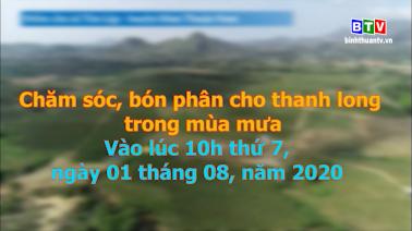 Giới thiệu Cầu truyền hình trực tiếp chương trình Kết nối bốn nhà 01.8.2020