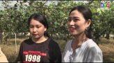 Du lịch Bình Thuận 2-11-2019